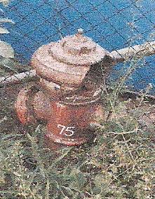 Hydrantenbilder1